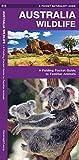 Australia Wildlife: A Folding Pocket Guide to Familiar Animals (Wildlife and Nature Identification)