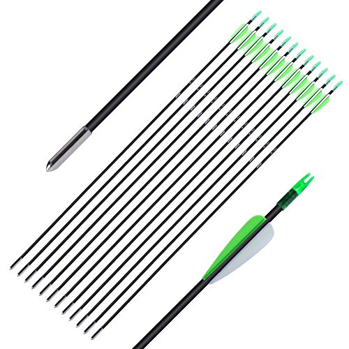 ANTSIR-30-inch-Fiberglass-Arrow-Archery-Hunting-Nock-Proof-Steel-Point-30lbs-For-Recuve-Compound-BowPack-of-12Superfine