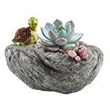 Succulent Plant Pot, Anpatio Animal Shape Garden Planter Adorable Carton Tortoise & Butterfly Window Box Desktop Flowerpot Fairy Office Home Inddor Outdoor Decoration
