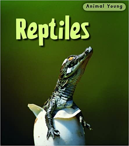 Ebooks gratuits à télécharger au format pdfReptiles (Animal Young) by Rod Theodorou en français PDF ePub MOBI