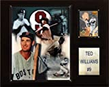 MLB Ted Williams Boston Red Sox Player Plaque