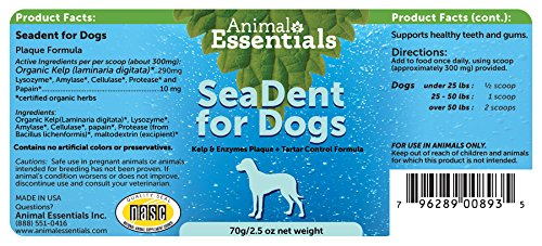 Animal Essentials Seadent Kelp y enzimas Placa y sarro de ...