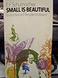 img - for Small is Beautiful book / textbook / text book
