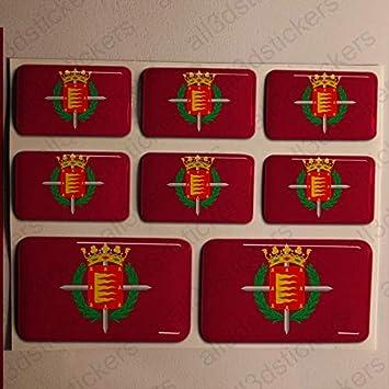 Pegatinas Valladolid España Resina, 8 x Pegatinas Relieve 3D Bandera Valladolid España Adhesivo Vinilo: Amazon.es: Coche y moto