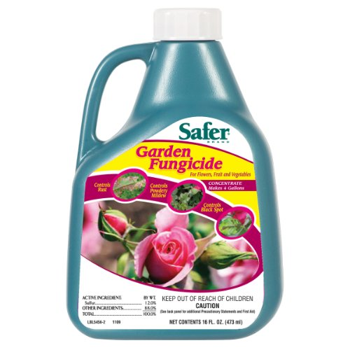safer-5456-garden-fungicide-concentrate-16-ounce