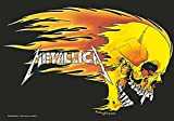 Metallica Skull  and  Flames large fabri