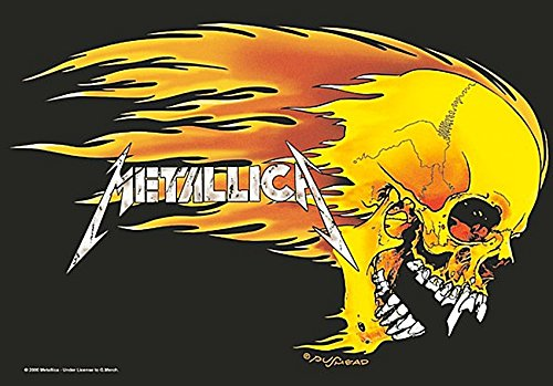 Metallica Skull & Flames large fabric poster / flag mm