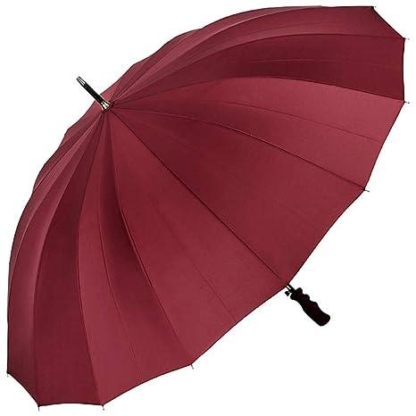 VON LILIENFELD® Paraguas Mujer Hombres Automática 2 Personas 16 segmentos XXL Cleo borgoña