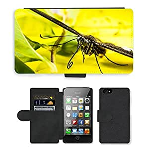 hello-mobile PU LEATHER case coque housse smartphone Flip bag Cover protection // M00136545 Insecto Mariposa // Apple iPhone 4 4S 4G
