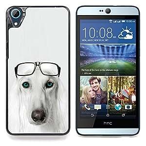 """Raza del perro de Saluki Hound Gafas Pérsico"""" - Metal de aluminio y de plástico duro Caja del teléfono - Negro - HTC Desire 626 626w 626d 626g 626G dual sim"""
