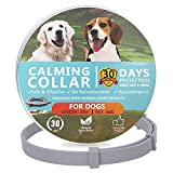 No Chew Spray Deterrent for Dogs, Anti Chew Pet Training Corrector   Non-Toxic   Alcohol Free   Made in USA