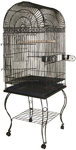 A&E CAGE COMPANY 001045 Black Economy Dome Top Bird Cage, 20 x 20 x 58