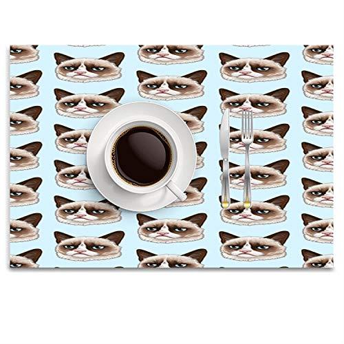 KRDFbxh Blue Backgroud Pattern Pattern Fashion Placemat Ease Care Wipe Clean Table Place Mat Set 14.8
