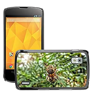 Hot Style Cell Phone PC Hard Case Cover // M00117311 Spider Insect Bug Web Nature // LG Nexus 4 E960