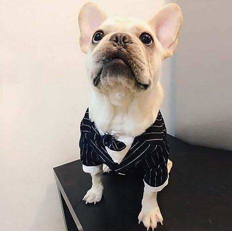 Petvins Disfraz de Esmoquin para Perro con Corbata de Lazo, Traje ...