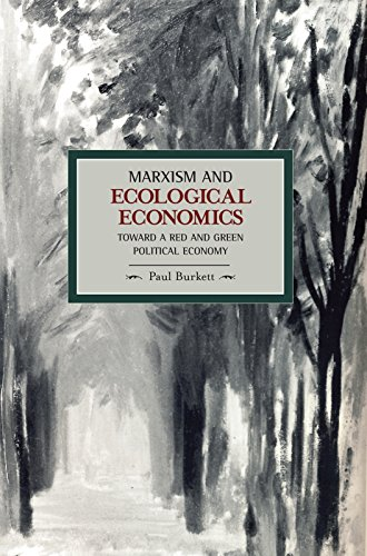 Marxism and Ecological Economics: Toward a Red and Green Political Economy (Historical Materialism)