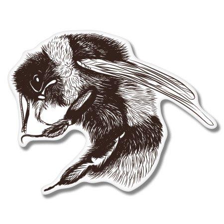 Bumble Bee Vinyl - Bumble Bee Vinyl Sticker - Car Phone Helmet - SELECT SIZE