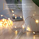 eufy 33 ft LED Decorative Lights Dimmable with