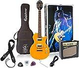 "Epiphone Slash ""AFD"" Les Paul Electric Guitar"