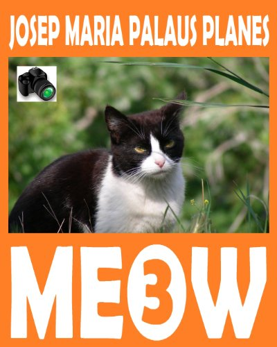Descargar Libro Meow [3] [esp] Josep Maria Palaus Planes