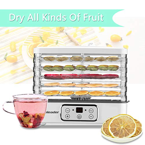 Food Dehydrator, Electric Digital Food Dehydrator Machine for Jerky, Fruit, Vegetables & Nuts, Vegetable Dryer with Timer and Temperature Control, Homeleader Food Dehydrator with Five Trays, LCD Display Screen, K33-022 by Homeleader (Image #7)