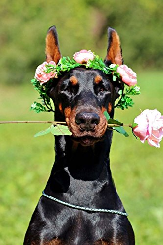 Floral Doberman Notebook: 150 lined pages, glossy softcover, 6 x 9 por Wild Pages Press