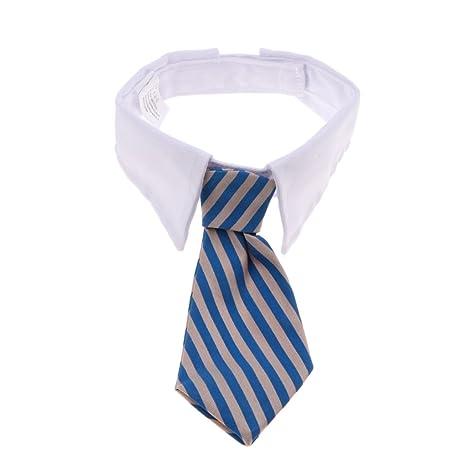 Non-brand Collar de Corbata para Mascotas, Ajustable, diseño de ...