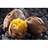 石焼き芋の石 お徳用 (無着色/無害)石のさかい