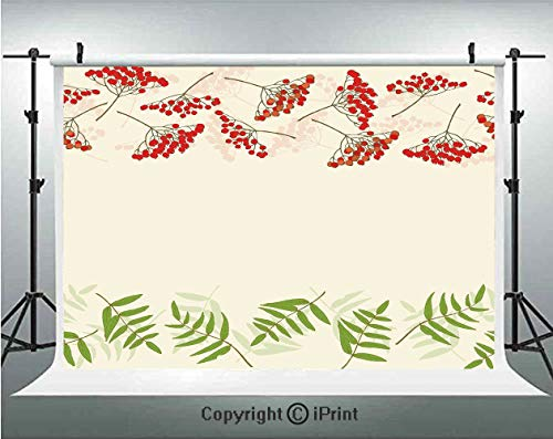 ckdrops Graphic Border Design Berries Mountain Ashes Botanical Nature Themed Decorative,Birthday Party Background Customized Microfiber Photo Studio Props,10x10ft,Vermilion Ivory F ()