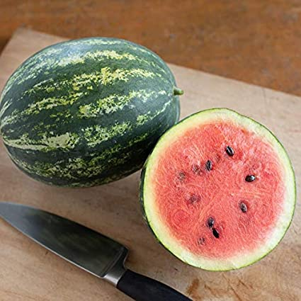 Crimson Sweet Watermelon Grown in USA NON GMO 100 Seeds Open Polinated