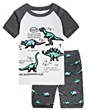 Kyпить Little Pajamas Boys Pajamas Short Clothes Set Dinosaur 100% Cotton Toddler Kids Short PJS Sleepwear Size8 на Amazon.com