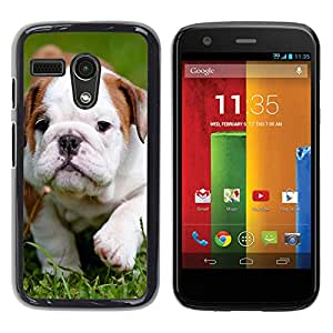 - Bulldog Bull Dog Pet Puppy - - Caja del tel???¡¯????fono delgado Guardia Armor FOR Motorola Moto G (3rd Gen 2015) Devil Case
