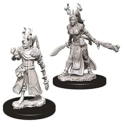 Dungeons & Dragons Nolzur`s Marvelous Unpainted Miniatures: W9 Female Human Druid: Toys & Games