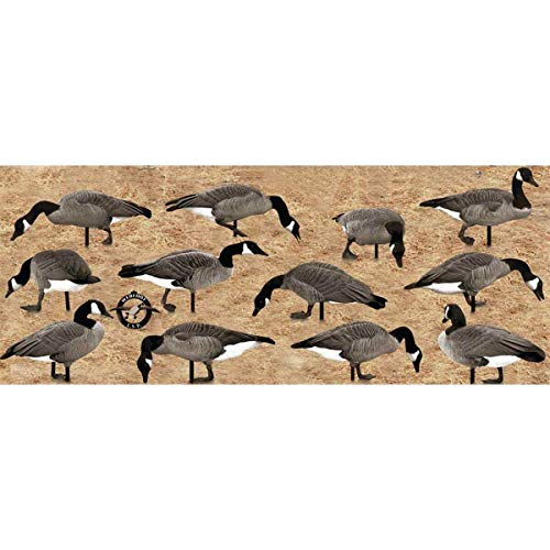 Series Canada Goose Decoy - Real Geese Pro Series II Silhouette Canada Goose Decoys 12 P