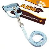 Alfie Pet by Petoga Couture - Kobi Harness and Leash Set for Small Animals like Guinea Pigs and Rabbits - Color: Blue Black