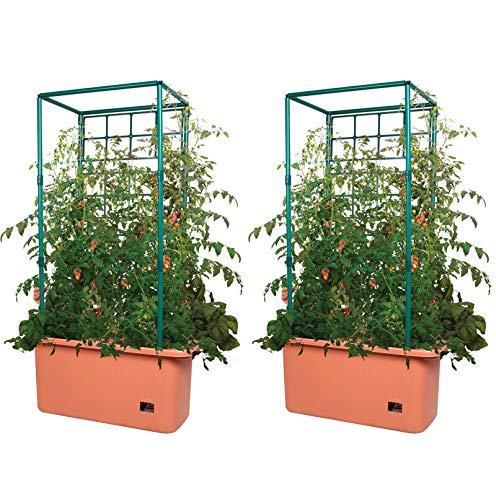 Hydrofarm 10 Gallon Self Watering Tomato Trellis Garden on Wheels, Pair | GCTR (Planters Tomato)