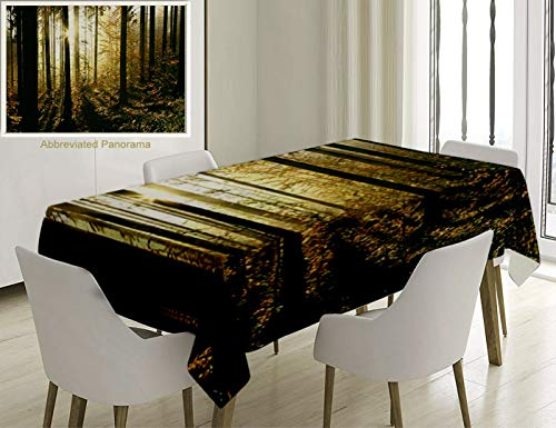 Unique Custom Cotton And Linen Blend Tablecloth Farm House Decor Collection Coniferous Forest On A Misty Autumn Morning Sunbeams Coming Between Pine TTablecovers For Rectangle Tables, 86 x 55 Inches ()