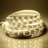 WenTop Led Strip Lights Non-waterproof Led Tape Light DC 12v SMD 3528 16.4 Ft (5M) 300leds 60leds/m Warm White Lights Led Adhesive Strip for Kitchen Counter, Under Cabinet, Ceilling - No Power Supply