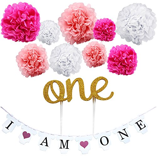 """KUNGYO Girl's First Birthday Party Decoration Kit- Pink Sweet Heart """"I am One""""Bunting Banner+9 Pcs Tissue Paper Flower Pom Poms Garland+Gold """"One""""Cake Topper-Perfect 1ST Party Supplies"""