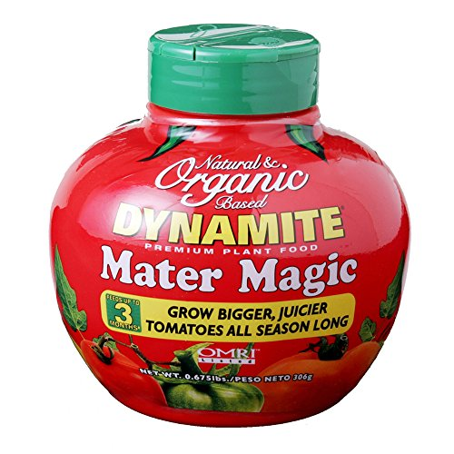 Dynamite Natural and Organic Mater Magic Plant Food 0.675-Pound (1 qty) (Magic Plant)