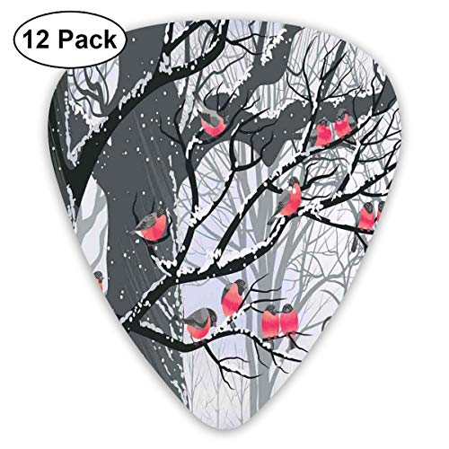 Celluloid Guitar Picks - 12 Pack,Abstract Art Colorful Designs,Cute Bullfinches On Trees Winter City Park Snow Cold Weather Immigrant Birds Design Theme,For Bass Electric & Acoustic Guitars. -