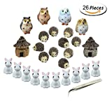 Miniature Garden Ornaments,Fashionclubs 24pcs Miniature Ornaments Kit Set Fairy Garden Figurines Accessories for DIY Dollhouse Plant Pot Decoration,with 1pcs Tweezer For Sale