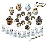 Miniature Garden Ornaments,Fashionclubs 24pcs Miniature Ornaments Kit Set Fairy Garden Figurines Accessories for DIY Dollhouse Plant Pot Decoration,with 1pcs Tweezer