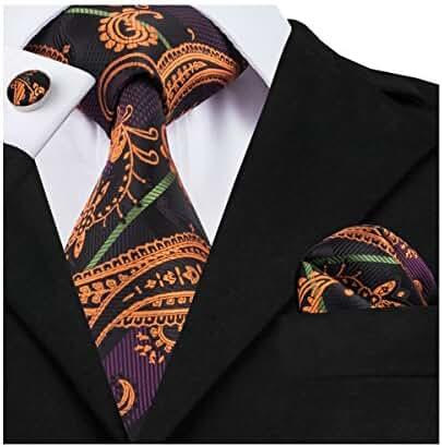 Hi-Tie Fashion Paisley Necktie Set Woven Silk