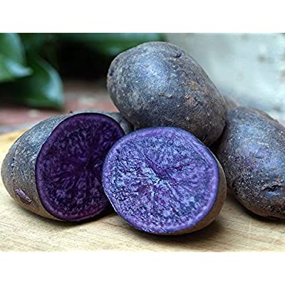 Purple Majesty Certified Organic Seed Potato 5 lb. Bag - Heirloom - Great Taste! : Garden & Outdoor