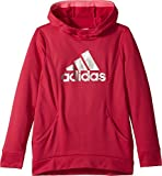 adidas Kids Girl's Performance Hooded Sweatshirt (Big Kids) Dark Pink Large
