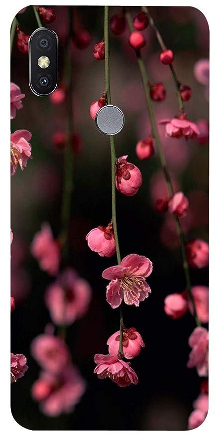buy popular 3c341 6f750 Anaya Back Cover for Redmi Y2 (Dark Grey, 32GB)