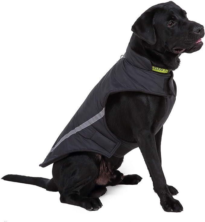 Nero L Intimo per Cani Morbido e Confortevole Cotone Femminile Pet Pantaloni Sanitari Cucciolo Fisiologico Pannolini per Cani per Cani Piccoli di Taglia Media e Grande