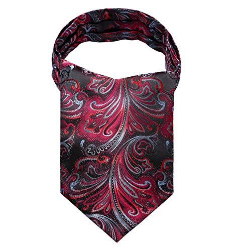 HISDERN Men's Floral Jacquard Woven Self Cravat Tie Ascot Red/Gray/Black from HISDERN