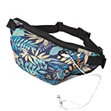 Fanny Pack for Men Women – Lingae Outdoor Walking Travel Large Capacity Waterproof Nylon Wast Pack Bag (Blue) Review